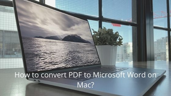 How to convert PDF to Microsoft Word on Mac